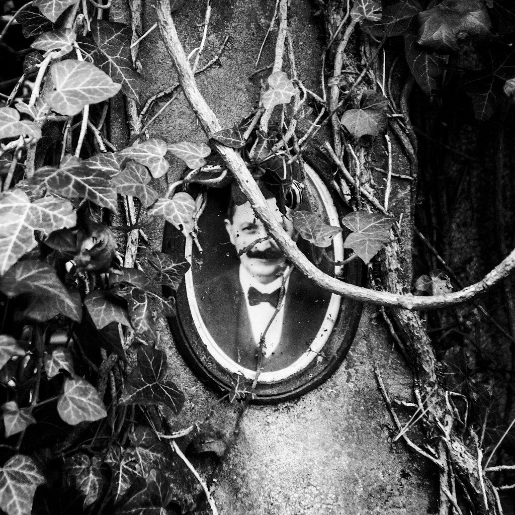 Portrait dans le cimetière. (Bruxelles)